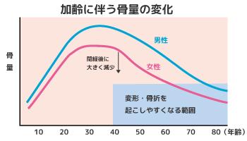 加齢に伴う骨量の変化