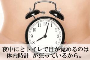 体内時計 夜間頻尿